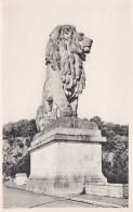Ph-CPSM Belgique La Gileppe (Liège) Le Lion - Gileppe (Barrage)
