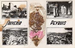 CPSM SOUVENIR DE PEYRUIS - DIVERSES VUES - France