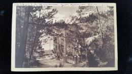 CPA  D44 Quimiac En Mesquer Bois De Pins - Mesquer Quimiac