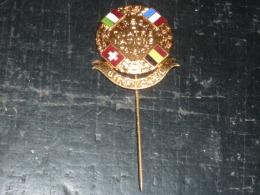 BROCHE EPINGLE - F.R.B.S.M - QUATRE NATIONS 28.06.1953 OFFICIEL - RARE AVIRON SPORT - Aviron