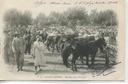 -AFRIQUE - ALGERIE - MAISON-CARREE-Marché Aux  Chevaux L               Carte Precurseur - Markets