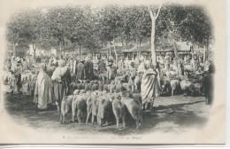-AFRIQUE - ALGERIE - MAISON-CARREE-Marché Au Betail               Carte Precurseur - Markets