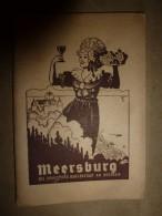 MEERSBURG DIE WEINFROHE BURGENSTADT AM BODENSEE - Meersburg