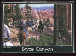 CPM Animée Etats Unis Brice Canyon Trail Ridge Chevaux - Bryce Canyon