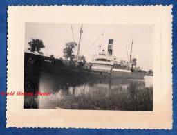 Photo Ancienne Snapshot - Lieu à Situer - Bateau Medec - Boats