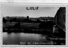 DEPT 44 : Mauves Sur Loire , Le Moulin De Trompe-Souris Et Les Iles - Mauves-sur-Loire
