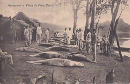 CPA BRESIL BRASIL AMAZONAS  PESCA Do PEIXE BOI - Manaus