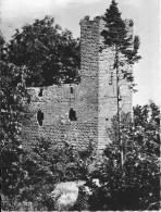 WANGENBOURG - 67 - Une Vue De La Ruine - ENCH0616 - - Sonstige Gemeinden