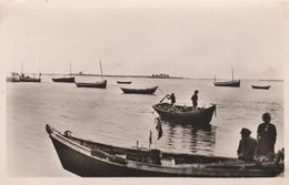 50 - REVILLE - Le Port; Au Dernier Plan L'Ile De Tatihou - France