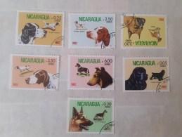 1982 Nicaragua Dogs (73) - Cani