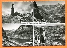 CAL1198, Grand St. Bernard, Multi-vues, Chien, Hospive, Lac, GF,circulée 1954 Sous Enveloppe - VS Wallis