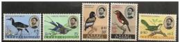 Etiopia/Ethiopie/Ethiopia: Uccelli Diversi, Different Birds, Différents Oiseaux - Altri