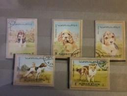1972 Ajman Dogs  (73) - Cani