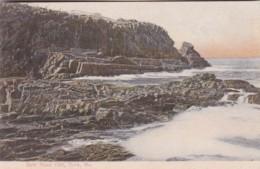Maine York Bald Head Cliff