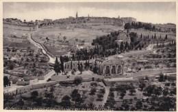 JERUSALEM - THE GARDEN OF GETHSEMANE @ MOUNT OF OLIVES - Palestine