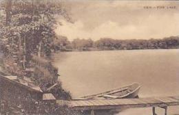 Michigan View Of Pine Lake Albertype