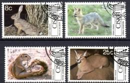 Naturschutz Säugetiere 1983 Südafrika Ciskei 30/3 O 3€ WWF Hase Kama-Fuchs Borsten-Hörnchen Karakal Set South Africa RSA - Ciskei