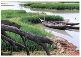 (818) Bangladesh River Scene (with Scout Stamp At Back Of Postcard) - Bangladesh