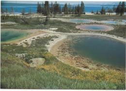 THUMB PAINT POTS, Yellowstone National Park, Unused Postcard [18896] - Yellowstone