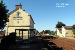 Gare D´Arnage Côté Voies , Sarthe - Une Photo Reproduite Carte Postale - Stations Without Trains