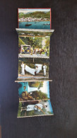 CP Carte Postale LOT 12 Cartes Madeire Portugal (T12) - Postcards