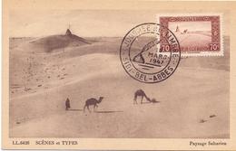 ALGERIE  1957 MAXIMUN POST CARD SCENES ET TYPES   (SET160041) - Algeria