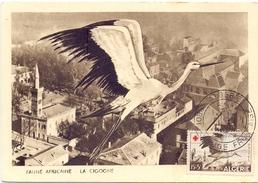 ALGERIE  1957 MAXIMUN POST CARD FAUNE AFRICAN THE STORK (SET160042) - Algeria