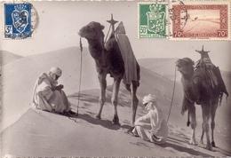 ALGERIE  DESERT  PHOTO 1949  (SET160044) - Algeria