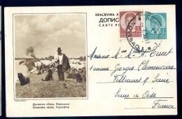 Cpa De Serbie Vojvodina , Dunavska Obala    LIOB105 - Serbie