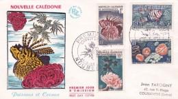 Nouvelle Calédonie - Lettre - Neukaledonien