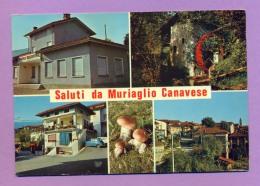 Saluti Da Muriaglio Canavese - Italia
