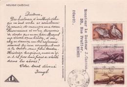 Nouvelle Calédonie - Lettre - Nouvelle-Calédonie