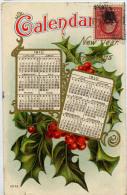 FANTAISIE CALENDRIER 1910 USA 3545 - Non Classés