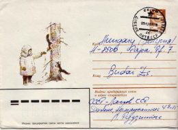 Postal History Cover: Soviet Union Used Postal Stationery With Squirrel - Rodents