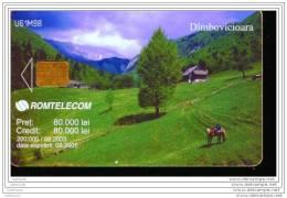 EA239     CARTE ROUMAINE A PUCE     PAYSAGE - Roumanie