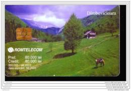 EA241     CARTE ROUMAINE A PUCE     PAYSAGE - Romania