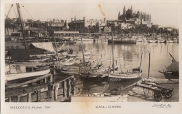 Espagne - Islas Baleares - Mallorca - Palma - Port Pêcheurs - Lonja Y Catedral - Palma De Mallorca