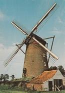 CPM Moulins Des Flandres (Steenvoorde) - Steenvoorde