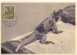 SURINAME PARAMARIBO 1956  POST CARD (SET160058) - Suriname