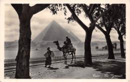 ¤¤  -  EGYPTE    -  Carte-Photo   -  LE CAIRE   -  Les Pyramides  -  Chameaux , Chameliers   -  ¤¤ - Cairo
