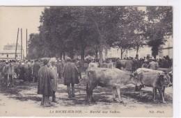 Vendée - La-Roche-sur-Yon - Marché Aux Vaches - La Roche Sur Yon