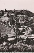 14 - VIRE - La Vallée Des Vaux - Vire