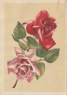 48739- ROSES, FLOWERS, TELEGRAMME, 1964, ROMANIA - Télégraphes