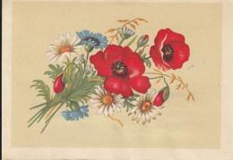 48740- POPPIES, DAISIES, WILD FLOWERS, TELEGRAMME, 1964, ROMANIA - Télégraphes