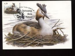 Belgie Buzin Vogels Birds 3538 Maximumkaart Fuut Namur 20/10/2012 RR - 1985-.. Oiseaux (Buzin)