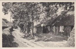 KASTERLEE Oude Hoeve Isschot Kempen (In Zeer Goede Staat) - Kasterlee