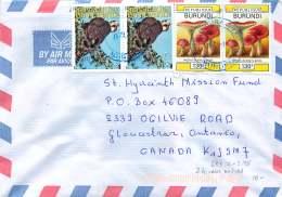2011  Lettre Avion Pour Les USA   Faucon 515 Fr X2, Champignon  130 Fr X2