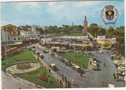 Tanger: DESOTO '57, PLYMOUTH BELVEDERE '55, PEUGEOT 403 & 404, AUTOBUS/COACH - Place Du Grand Socco  - (Maroc) - Passenger Cars