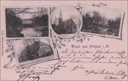 Ansichtskarte AK: Gruss Aus Pritzier I. Mecklenburg 1899 - Deutschland