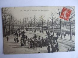 AL 8 - 59 - LILLE -  AVENUE DES MARRONNIERS - Lille